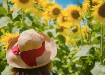 夏はやっぱり麦わら帽子が人気