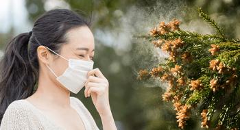 花粉症対策のメガネは本当に必要?